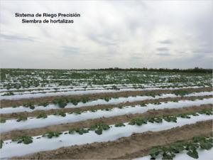 Rancho agricola, ganadero en venta en Los Ramones Nuevo Leon