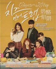 Cheese in the Trap _ Korean (TV Series) English Sub DVD _ Region 0_ Park Hae-jin
