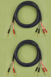Straightwire Musicable II speaker cables 10/' Internally Bi-wired pair