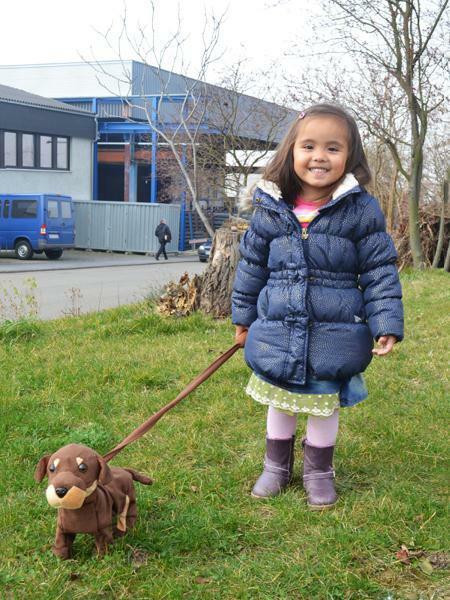 Hund Dancymals laufender Hund mit Sound Plüsch an Leine Spielzeug 75701