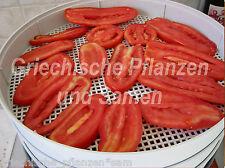 One Six Paste italiano Tomate de pera Frutas gigantes 10 Semillas frescas Balkon