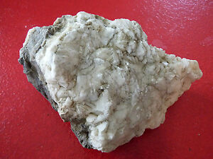 Special-Scarce-Item-Collectible-Stone-From-Gaspesia-Canada