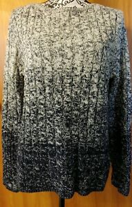 RALPH-LAUREN-LRL-womens-Blue-White-Varigated-Cable-Knit-Sweater-XL-L-NWOT