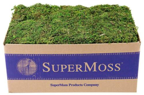3 lb Bulk Case SuperMoss Mountain Moss Preserved Fresh Green 23805 Appx