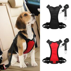 Dog Seat Belt Harness >> Soft Mesh Pet Dog Cat Harness Seat Belt Clip Leash Soft Padded For