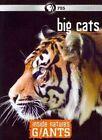 Inside Nature S Giants Big Cats 0841887016551 DVD Region 1 P H