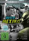 Im Busch von Mexiko (2011)