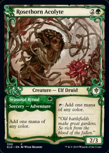 Rosethorn Acolyte Showcase Throne of Eldraine MTG Magic - C NM//M