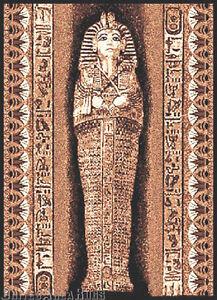5x7 Area Rug Pharaoh Ancient Egypt King Tut Egyptian
