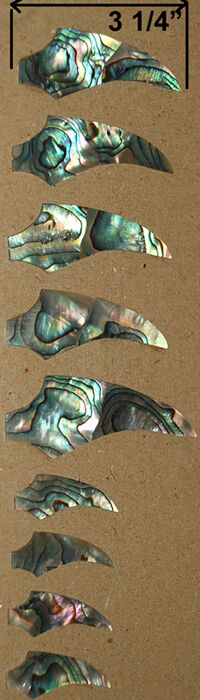 FR8  Claw Fretboard Inlay Set In Paua Abalone for Guitar