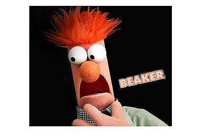 Muppets Fraggle Rock #1 TShirt Iron on Transfer 5x7
