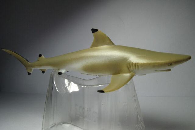 CollectA BLACKTIP REEF SHARK plastic toy wild zoo sea ocean animal FISH  NEW