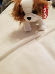 Ty Beanie Baby 2000 REGAL the King Charles Spaniel Dog  with TAGS RETIRED