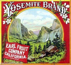 Yosemite Orange Citrus Fruit Crate Label Art Print Earl Fruit  California