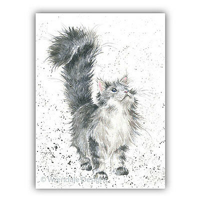Cat Blank Greeting Card Wrendale Design Country Set Marmalade Cat