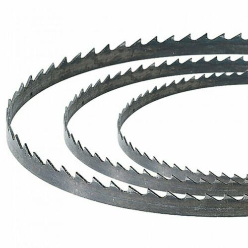 Grizzly G0513ANV Bandsaw Blade 1//4 Inch x 24 TPI for 17 Inch Bandsaw