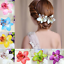 Wedding-Bridesmaid-Beach-Accessories-Flower-Bridal-Hair-Clip-Hairpin-Women-Girls