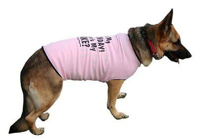 Dog T Shirt Big Tee Tank HAPPY BIRTHDAY Ribbed Cotton Fashion Fun BIG GIRLS