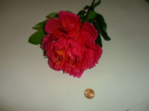 Vintage Large Plastic Bright Pink Peony from the 60/'s