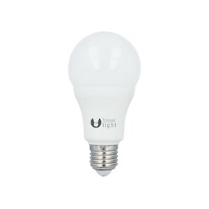 E27-15W-LED-Gluehbirne-Kaltweiss-6000K-1520-lm-Ersetzt-100W-Gluehlampe-2x-3x-6x-10x