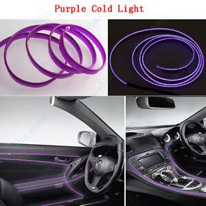 Purple door strip