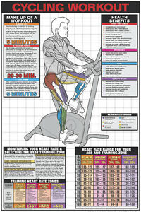 fitness wall chart stationary bicycle cycling workout gym