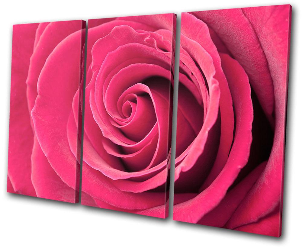 Floral rosas Flowers Love TREBLE TREBLE TREBLE TELA parete arte foto stampa db083b