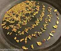 6 Oz Rich Gold Paydirt - Concentrates Paydirt Nuggets Flakes Panning Pay Dirt