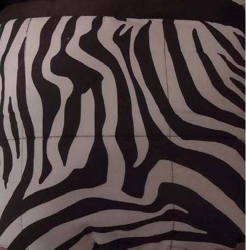 Concierge Collection Down Alternative Microfiber Blanket Zebra Full Queen