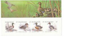 TIMBRE-STAMP-ZEGEL-BELGIQUE-CARNET-NATURE-LES-CANARDS-2332-2335-XX