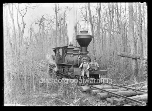 "Photo 1909 Georgia /""Wood Burning Log Train/"""