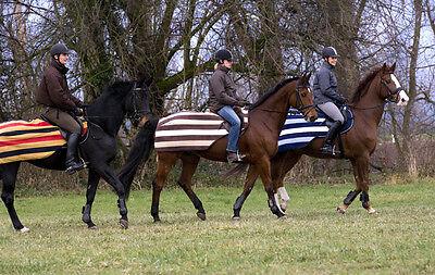 Horseware Rambo Newmarket Compéion