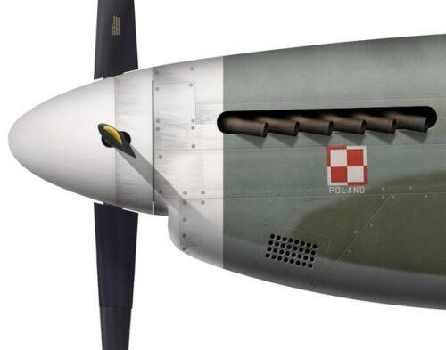 Squadron RAF Andrzej Czerwinski 315 Polish by G. Marie Print Mustang III