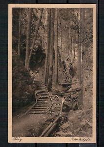 Ansichtskarte - Tabarz - Bärenbruchgraben - Thür. Wald