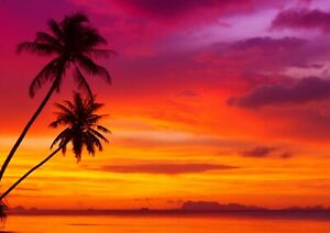 Beautiful-Tropical-Sunset-Poster-Print-Size-A4-A3-Nature-Poster-Gift-8269
