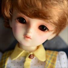 DOLLMORE Asian 1/4BJD Kid Dollmore Boy - Latte (Make up)