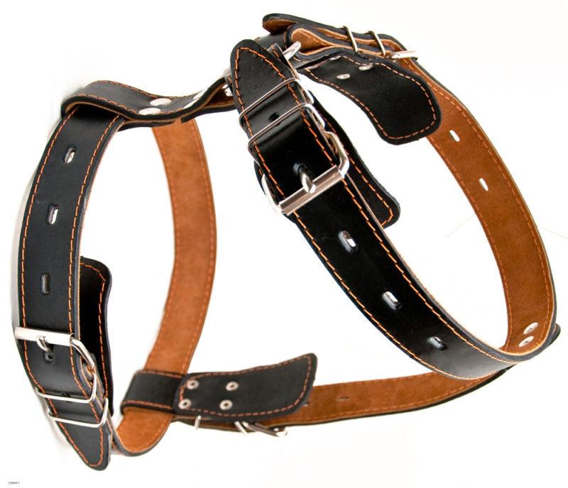 Genuine Leather Dog Harness 31 - 37  chest rossotweiler German Shepherd Doberman