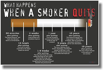 What Happens When A Smoker Quits - NEW Health Poster