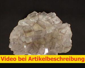 6100-Fluorite-Phantoms-Pit-Hermione-lt-1987-wolsendorf-area-Movie