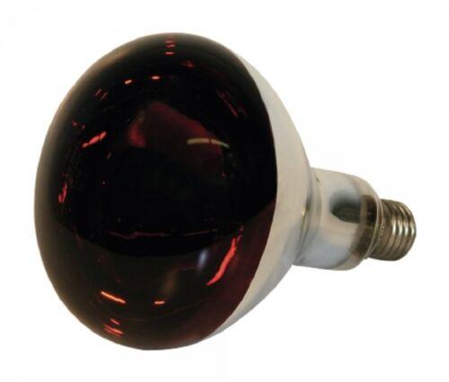 Hartglas Infrarotlampe Kerbl 22245 rot bei 240 V