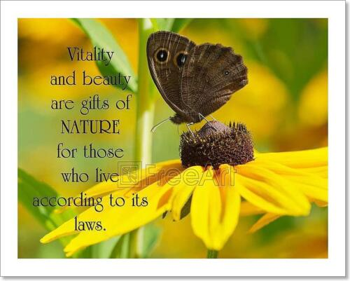 Inspirational Quote On Nature By Art Print Home Decor Wall Art Poster H