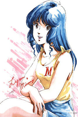 Macross DYRL Hikaru Misa Minmay Poster 12inchesx18inches Free Shipping