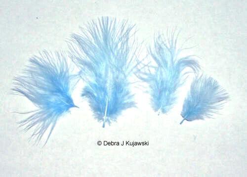 "Marabou Feathers Small 1-3/"" fluffs HUNTER GREEN  7 grams approx 105 per bag"