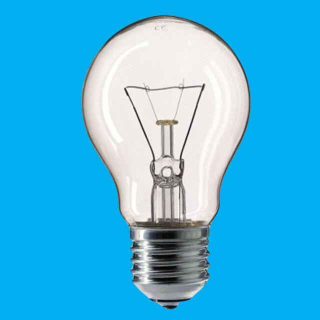 2x 60W 110V Light Bulb Pearl GLS ES E27 Construction Site Festoon Outside Lamp