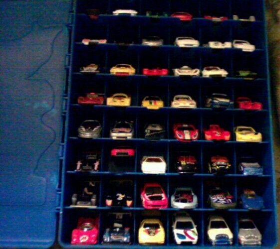 Tara Hot Wheels Carrying Case With 48 Hot Wheels Race Cars