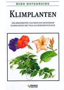 KLIMPLANTEN-Jan-Tykac-REBO-NATUURGIDS-in-zeer-goede-staat