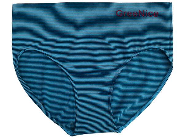 Damen Slip mit hohem Bund Unterwäsche Schlüpfer Pants aus Microfaser