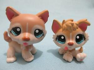 Littlest Pet Shop Lot Husky Puppy Dog 1012 And 1013 Mommy Baby