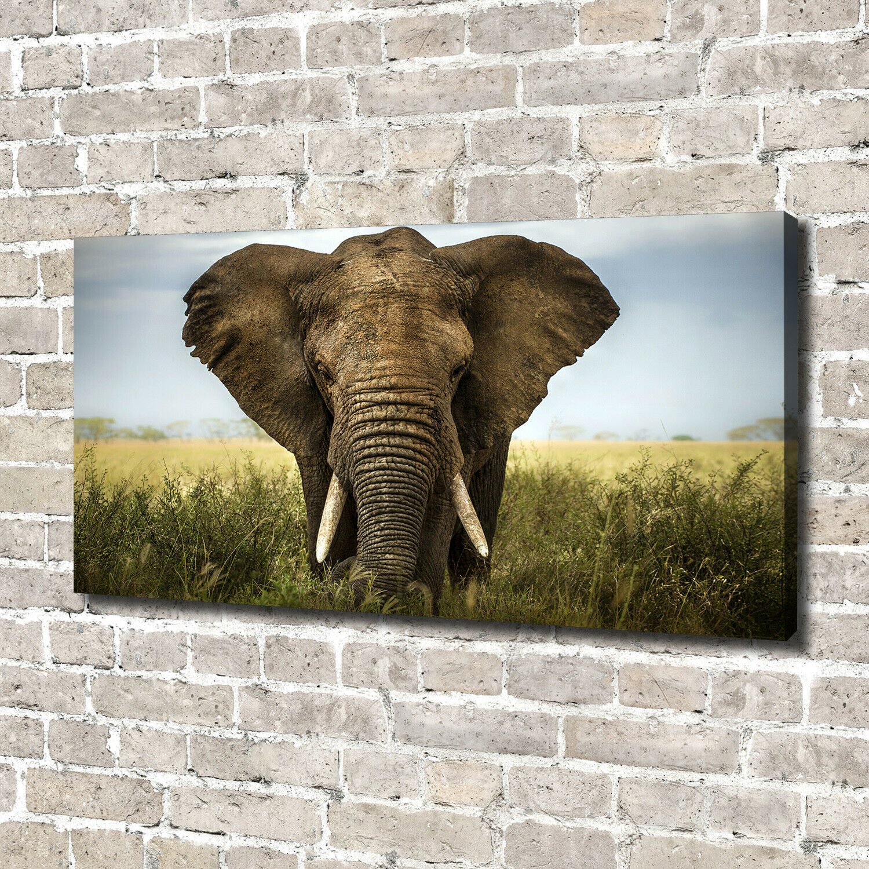 Leinwandbild Kunst-Druck 140x70 Bilder Tiere Elefant Savanne