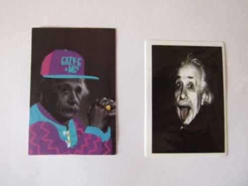 Einstein Vinyl Decal Sticker  Phone/Skateboard  Choose your sticker